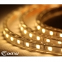ADISI LED 暖白光燈條-6米 AS17001-6m